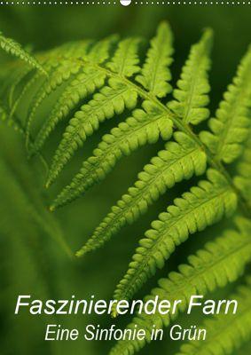 Faszinierender Farn - Eine Sinfonie in Grün (Wandkalender 2019 DIN A2 hoch), Brigitte Deus-Neumann
