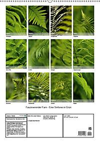 Faszinierender Farn - Eine Sinfonie in Grün (Wandkalender 2019 DIN A2 hoch) - Produktdetailbild 13
