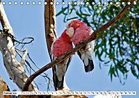 Faszinierendes Kangaroo Island (Tischkalender 2019 DIN A5 quer) - Produktdetailbild 2