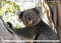 Faszinierendes Kangaroo Island (Tischkalender 2019 DIN A5 quer) - Produktdetailbild 5