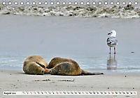 Faszinierendes Kangaroo Island (Tischkalender 2019 DIN A5 quer) - Produktdetailbild 8