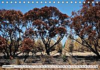 Faszinierendes Kangaroo Island (Tischkalender 2019 DIN A5 quer) - Produktdetailbild 9