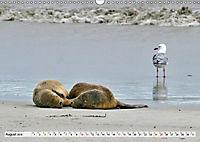 Faszinierendes Kangaroo Island (Wandkalender 2019 DIN A3 quer) - Produktdetailbild 9