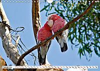 Faszinierendes Kangaroo Island (Wandkalender 2019 DIN A4 quer) - Produktdetailbild 2