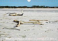Faszinierendes Kangaroo Island (Wandkalender 2019 DIN A4 quer) - Produktdetailbild 4