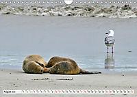 Faszinierendes Kangaroo Island (Wandkalender 2019 DIN A4 quer) - Produktdetailbild 8