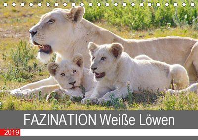 FAZINATION Weisse Löwen (Tischkalender 2019 DIN A5 quer), Thula
