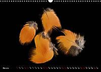 Federleichte Momente (Wandkalender 2019 DIN A3 quer) - Produktdetailbild 5