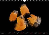 Federleichte Momente (Wandkalender 2019 DIN A4 quer) - Produktdetailbild 5