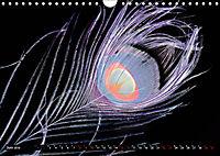 Federleichte Momente (Wandkalender 2019 DIN A4 quer) - Produktdetailbild 6