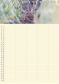 Feldhasen - Familienplaner (Tischkalender 2019 DIN A5 hoch) - Produktdetailbild 3