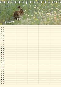 Feldhasen - Familienplaner (Tischkalender 2019 DIN A5 hoch) - Produktdetailbild 6