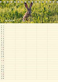 Feldhasen - Familienplaner (Tischkalender 2019 DIN A5 hoch) - Produktdetailbild 4