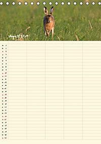 Feldhasen - Familienplaner (Tischkalender 2019 DIN A5 hoch) - Produktdetailbild 8
