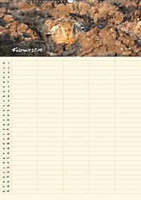 Feldhasen - Familienplaner (Wandkalender 2019 DIN A2 hoch) - Produktdetailbild 1