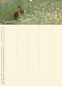 Feldhasen - Familienplaner (Wandkalender 2019 DIN A2 hoch) - Produktdetailbild 5