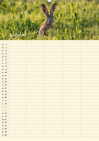 Feldhasen - Familienplaner (Wandkalender 2019 DIN A2 hoch) - Produktdetailbild 8