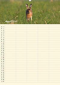 Feldhasen - Familienplaner (Wandkalender 2019 DIN A2 hoch) - Produktdetailbild 13