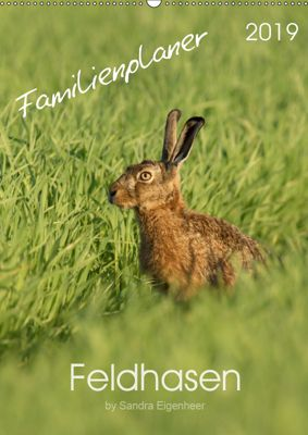 Feldhasen - Familienplaner (Wandkalender 2019 DIN A2 hoch), Sandra Eigenheer