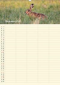 Feldhasen - Familienplaner (Wandkalender 2019 DIN A2 hoch) - Produktdetailbild 12