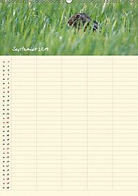 Feldhasen - Familienplaner (Wandkalender 2019 DIN A2 hoch) - Produktdetailbild 9