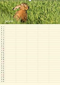 Feldhasen - Familienplaner (Wandkalender 2019 DIN A2 hoch) - Produktdetailbild 7