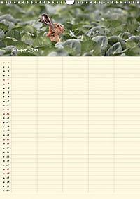 Feldhasen - Familienplaner (Wandkalender 2019 DIN A3 hoch) - Produktdetailbild 1