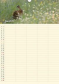 Feldhasen - Familienplaner (Wandkalender 2019 DIN A3 hoch) - Produktdetailbild 6