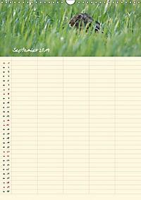 Feldhasen - Familienplaner (Wandkalender 2019 DIN A3 hoch) - Produktdetailbild 9