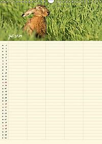 Feldhasen - Familienplaner (Wandkalender 2019 DIN A3 hoch) - Produktdetailbild 7