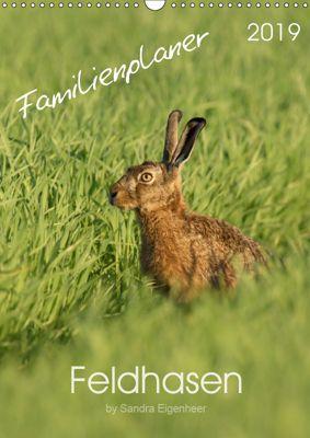 Feldhasen - Familienplaner (Wandkalender 2019 DIN A3 hoch), Sandra Eigenheer