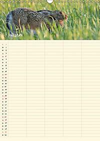 Feldhasen - Familienplaner (Wandkalender 2019 DIN A3 hoch) - Produktdetailbild 5