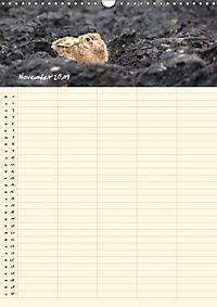 Feldhasen - Familienplaner (Wandkalender 2019 DIN A3 hoch) - Produktdetailbild 11