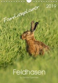 Feldhasen - Familienplaner (Wandkalender 2019 DIN A4 hoch), Sandra Eigenheer