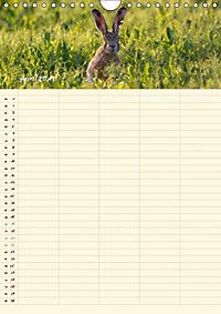 Feldhasen - Familienplaner (Wandkalender 2019 DIN A4 hoch) - Produktdetailbild 7