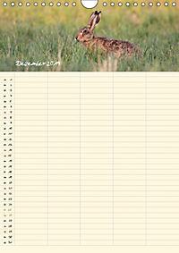 Feldhasen - Familienplaner (Wandkalender 2019 DIN A4 hoch) - Produktdetailbild 4