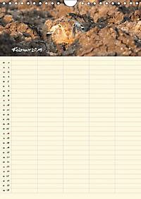 Feldhasen - Familienplaner (Wandkalender 2019 DIN A4 hoch) - Produktdetailbild 5