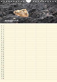Feldhasen - Familienplaner (Wandkalender 2019 DIN A4 hoch) - Produktdetailbild 8