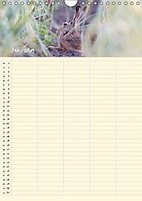 Feldhasen - Familienplaner (Wandkalender 2019 DIN A4 hoch) - Produktdetailbild 9