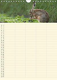 Feldhasen - Familienplaner (Wandkalender 2019 DIN A4 hoch) - Produktdetailbild 11