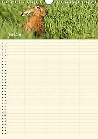Feldhasen - Familienplaner (Wandkalender 2019 DIN A4 hoch) - Produktdetailbild 13