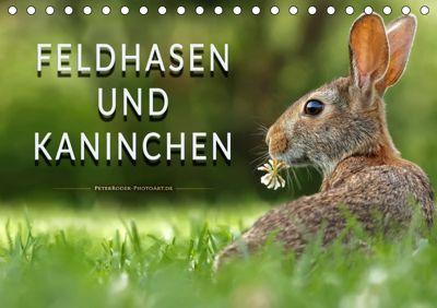 Feldhasen und Kaninchen (Tischkalender 2019 DIN A5 quer), Peter Roder