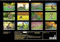 Feldhasen und Kaninchen (Wandkalender 2019 DIN A2 quer) - Produktdetailbild 13