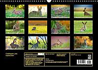 Feldhasen und Kaninchen (Wandkalender 2019 DIN A3 quer) - Produktdetailbild 13