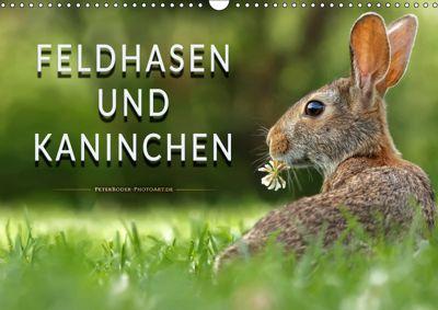 Feldhasen und Kaninchen (Wandkalender 2019 DIN A3 quer), Peter Roder