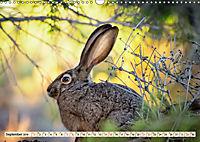 Feldhasen und Kaninchen (Wandkalender 2019 DIN A3 quer) - Produktdetailbild 9