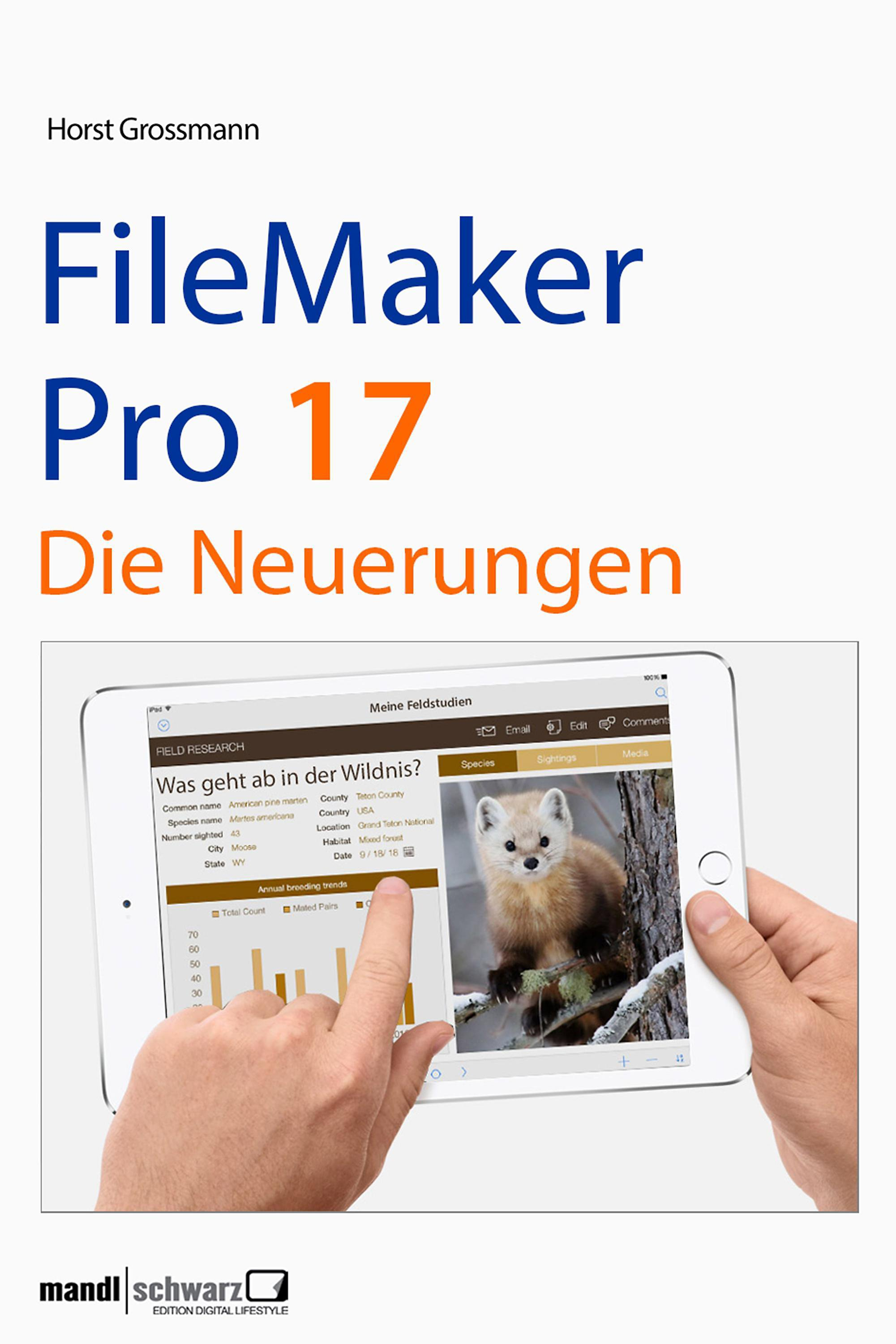 National Day Of Reconciliation ⁓ The Fastest Filemaker Pro 17