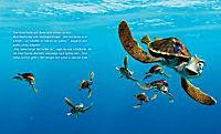 Findet Nemo, Meine Kindergartenfreunde - Produktdetailbild 3