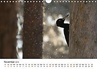 Finland's fauna (Wall Calendar 2019 DIN A4 Landscape) - Produktdetailbild 11