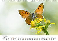 Finland's fauna (Wall Calendar 2019 DIN A4 Landscape) - Produktdetailbild 7